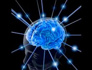 Contribuciones-de-la-neurociencia-en-la-educación-2