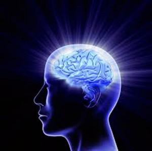 Contribuciones-de-la-neurociencia-en-la-educación-1
