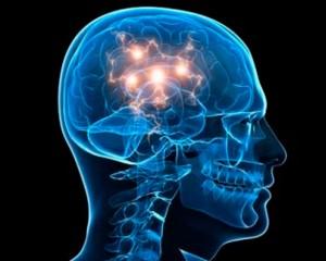 Contribuciones-de-la-neurociencia-en-la-educación-3